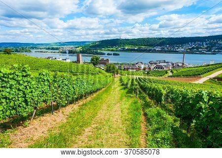 Vineyards, Rudesheim Am Rhein And Bingen Am Rhein Town Aerial Panoramic View In The Rhine Valley, Ge