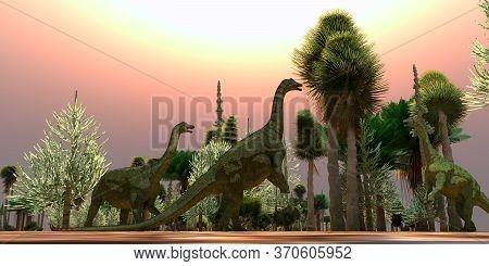 Saltasaurus Dinosaurs Eating 3d Illustration - A Saltasaurus Dinosaur Herd Munches On Cycad Trees Du