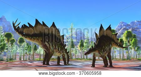 Stegosaurus Dinosaurs 3d Illustration - Two Herbivorous Armored Dinosaurs Eat In A Cycad Forest Duri