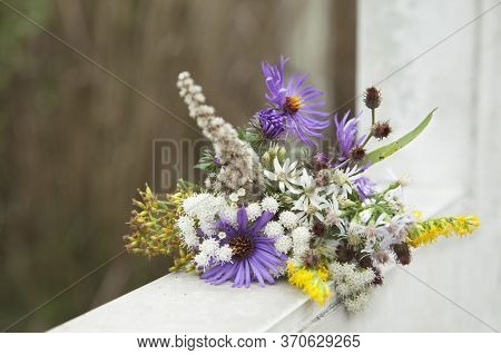 Tender Cute Small Beautiful Bouquet Of Wildflowers.