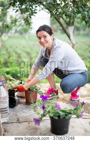woman replanting flowers in pots