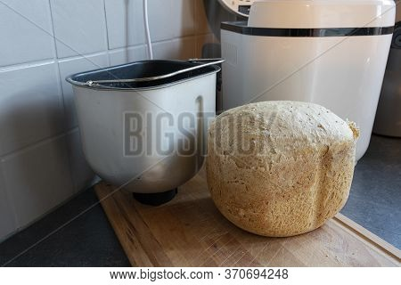 Fresh Wheat Bread Straight From The Bread Maker
