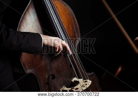 View Of Musician Playing On Contrabass On Dark Stage