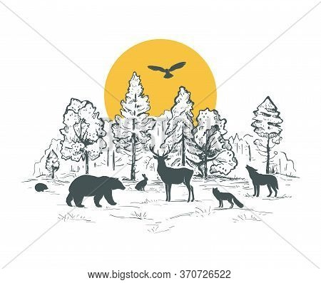 Sketch Vector Landscape With Forest, Sun And Animals. Animals Silhouettes. Deer, Hare, Fox, Owl, Hed