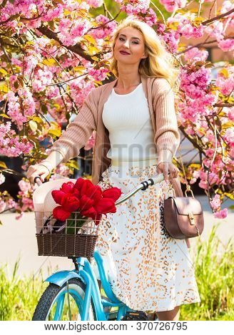 Self Guided Cycling Tours. Bike Ride Tours. Woman Ride Vintage Bicycle. Romantic Girl And Sakura Blo