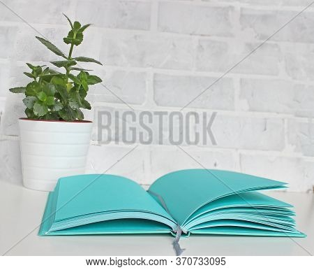 Composition On Desk With Books And Flowers On Wight Blackboard Background
