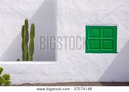 Lanzarote san Bartolome white typical house cactus and green window