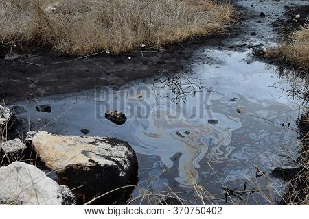 Natural Tar Water Asphalt Pit In Swamp Wetland.