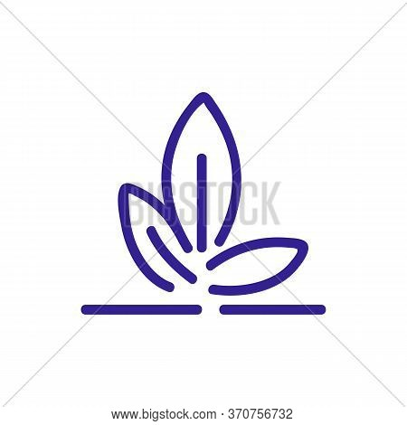 Bamboo Plant Leaves Icon Vector. Bamboo Plant Leaves Sign. Isolated Color Symbol Illustration