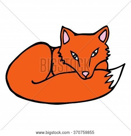 Hand Drawn Colorful Fox. Cartoon Color Fox Outline Doodle Style. Vector Illustration Isolated On Whi