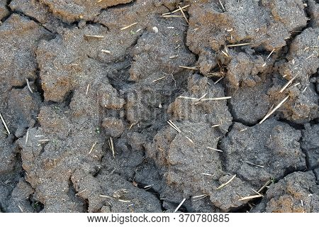 Dry Cracked Earth Texture. Dry Cracked Earth Background, Cracked Earth Texture.