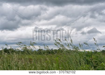 Storm Dark Clouds Over Field. A Close Up