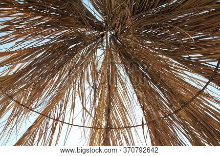 Sun Canopy Umbrella Of Dry Yellow Palm Leaves. The Sky Is Seen Through It