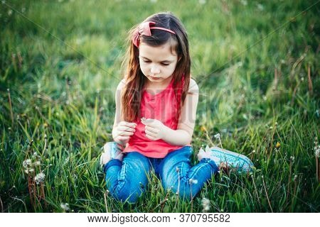 Cute Adorable Caucasian Girl Picking Flowers Dandelions. Kid Sitting In Grass On Meadow. Outdoor Fun