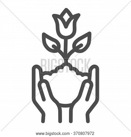 Human Hands Hold Tulip In Soil Line Icon, Spring Concept, Tulip Bud With Leaves Sign On White Backgr