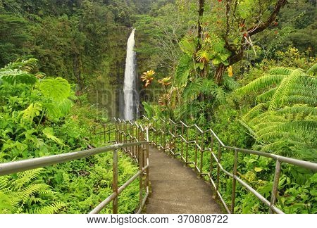 Scenic Landscape With Boardwalk And Stairs To Waterfall Inside The Rainforest. Akaka Falls State Par