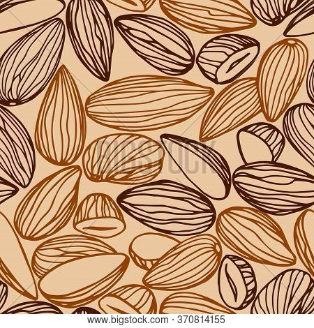 Seamless Pattern Of A Set Of Almond Kernels, For Menu Design Or Confectionery, Textiles, Vector Illu