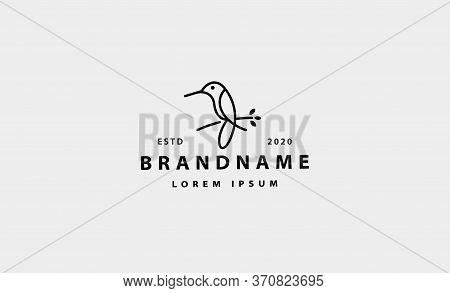 Bird Colibri Logo Simple Line Vector Design