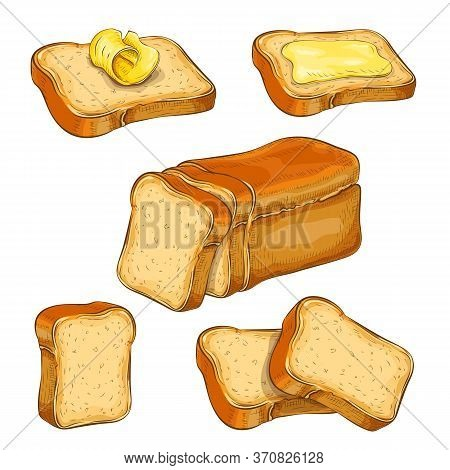 Set Of Wheat Sliced Bread And Toasts Illustration Isolated On White. White Square Loaf With Various