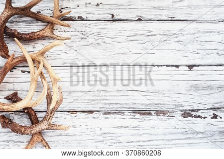 Border Of Real White Tail Deer Antlers Over A Rustic Wooden Table. These Are Used By Hunters When Hu