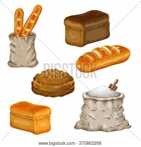 Bread Set Isolated On White. Collection Of Various Loaves Of Bread. Vector Illustration. Wheat, Rye,