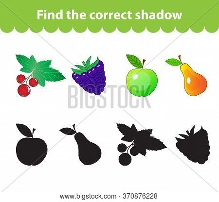 Childrens Educational Game, Find Correct Shadow Silhouette. Fruit Set The Game To Find The Right Sha