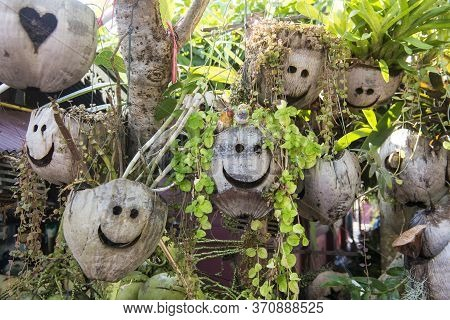 Thailand Sop Ruak Coconut Shop