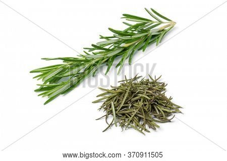 Heap of dried rosemary and fresh rosemary twig isolated on white background