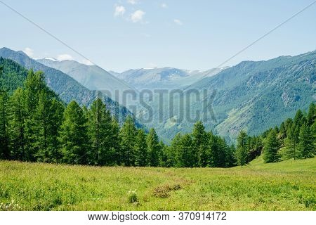 Beautiful View To Green Forest Hills And Mountain Range With Snow. Awesome Minimalist Alpine Landsca