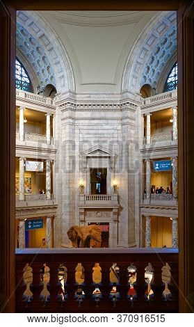 Washington, D.c., Usa - November 13, 2017: The View From A Gallery On The Main Hall Of The Smithsoni