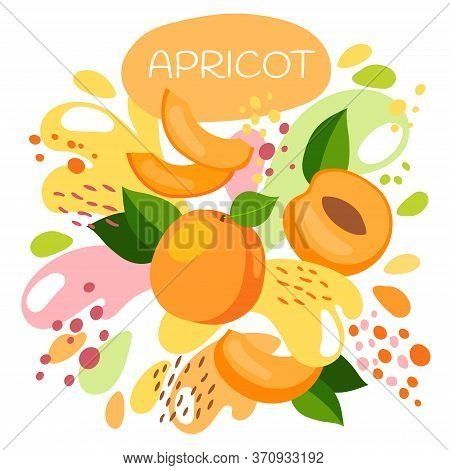 Vector Illustration Of An Organic Fruit Drink. Ripe Apricot Fruits With Splash Of Bright Fresh Apric