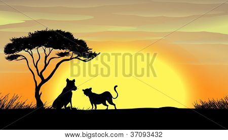 illustration of tiger and cub in a beautiful nature