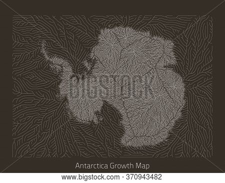Vector Antarctica Map. Generative Growth Structure In Form Of Continent. Organic Texture With Geogra