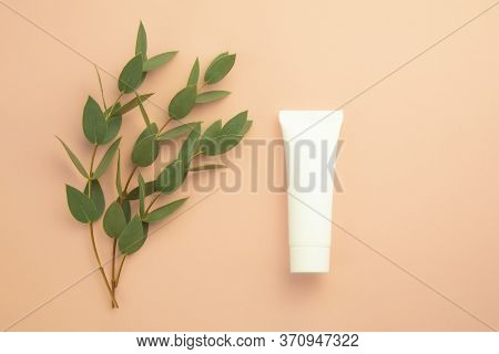 Natural Organic Cosmetic Skincare White Tube For Mock Up And Fresh Leaves On Beige Background. Beaut