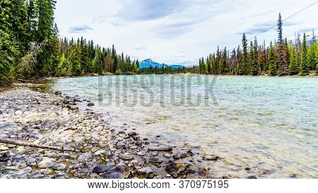 The Athabasca River At The Meeting Of The Rivers With The Whirlpool River In Jasper National Park, A