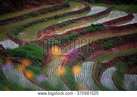 Pakkayo Hill Tribe Village Located In A Vegetable Cultivation Area Seasonal Fruit In The Mountains A
