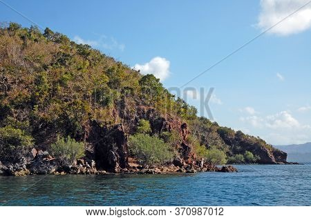 Rock Formation With Trees And Blue Water Sea In Coron, Palawan, Philippines