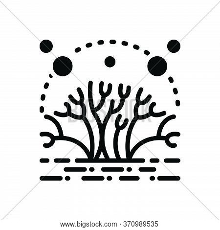 Black Solid Icon For Algae Moss Alga Fungus Mossy Natural Green