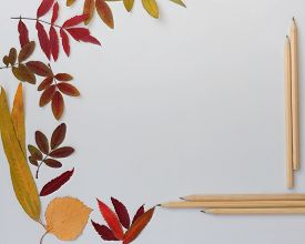 Frame Made Of Autumn Leaves And Pencils On White Background. Back To School Concept. Bright Red And