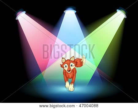 Illustration of a fox at the stage with spotlights
