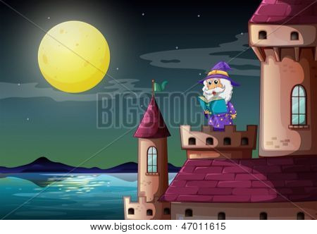 Illustration of a castle port with a wizard reading a book