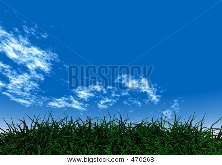 Green Grass Under A Blue Sky