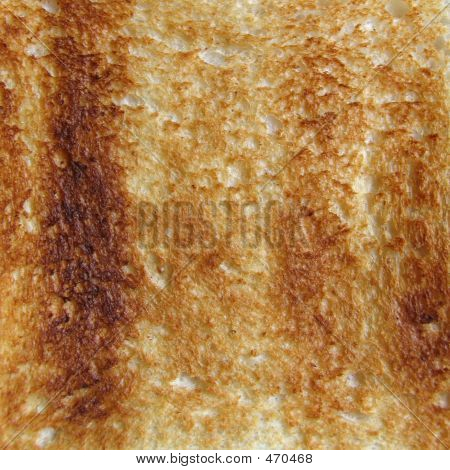 Square Toast Closeup
