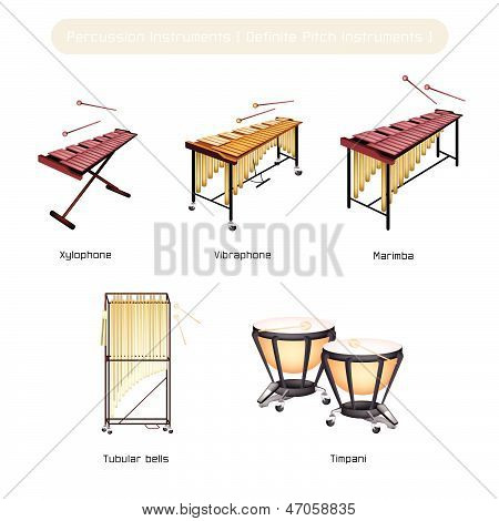 Set Of Musical Percussion Instruments Isolated On White Background