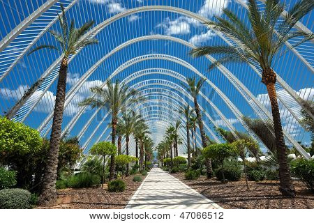 City of Arts and Sciences in Valencia