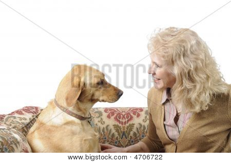 A female White Labrador dog looking quizzically as it's master poster