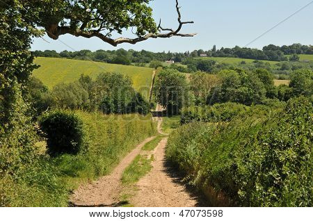 Country road in Kent, UK in the summertime