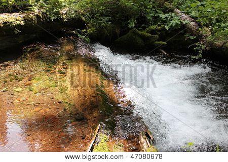 Rushing Mountain Stream