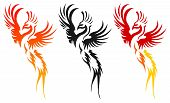 abstract art animal phoenix vector illustration pease symbol poster