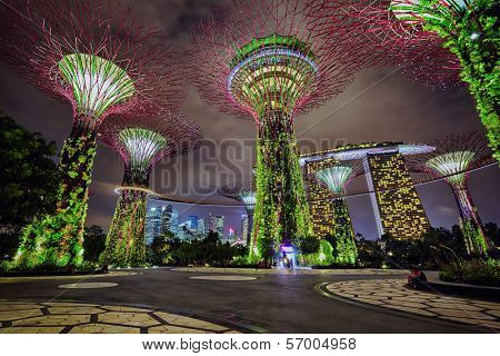 SINGAPORE - DECEMBER 02: Night view on Gardens by the Bay on December 02, 2013 in Singapore. Gardens by the Bay is a part of a plan to transform Singapore from a
